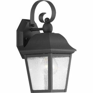 Ephraim 1-Light Outdoor Wall Lantern