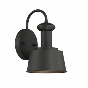 Darcy Outdoor Barn Light