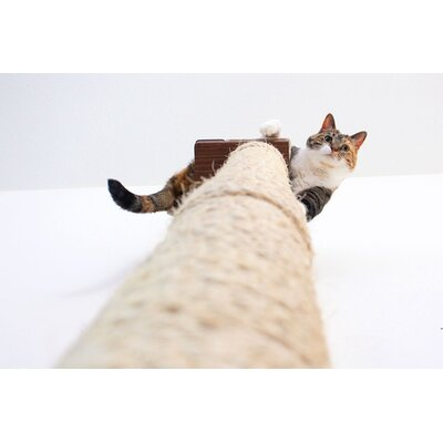 """53"""" Mod Wall-mounted Climbing Sisal Pole Catastrophicreations Color: English Chestnut"""