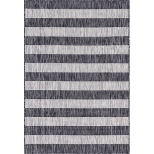 Hook Black/Gray Indoor/Outdoor Area Rug