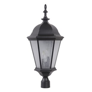 Darby Home Co Lorie 3-Light Lantern Head