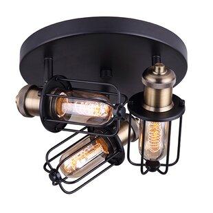 Breakwater Bay Wilken 3-Light Directional & Spotlight