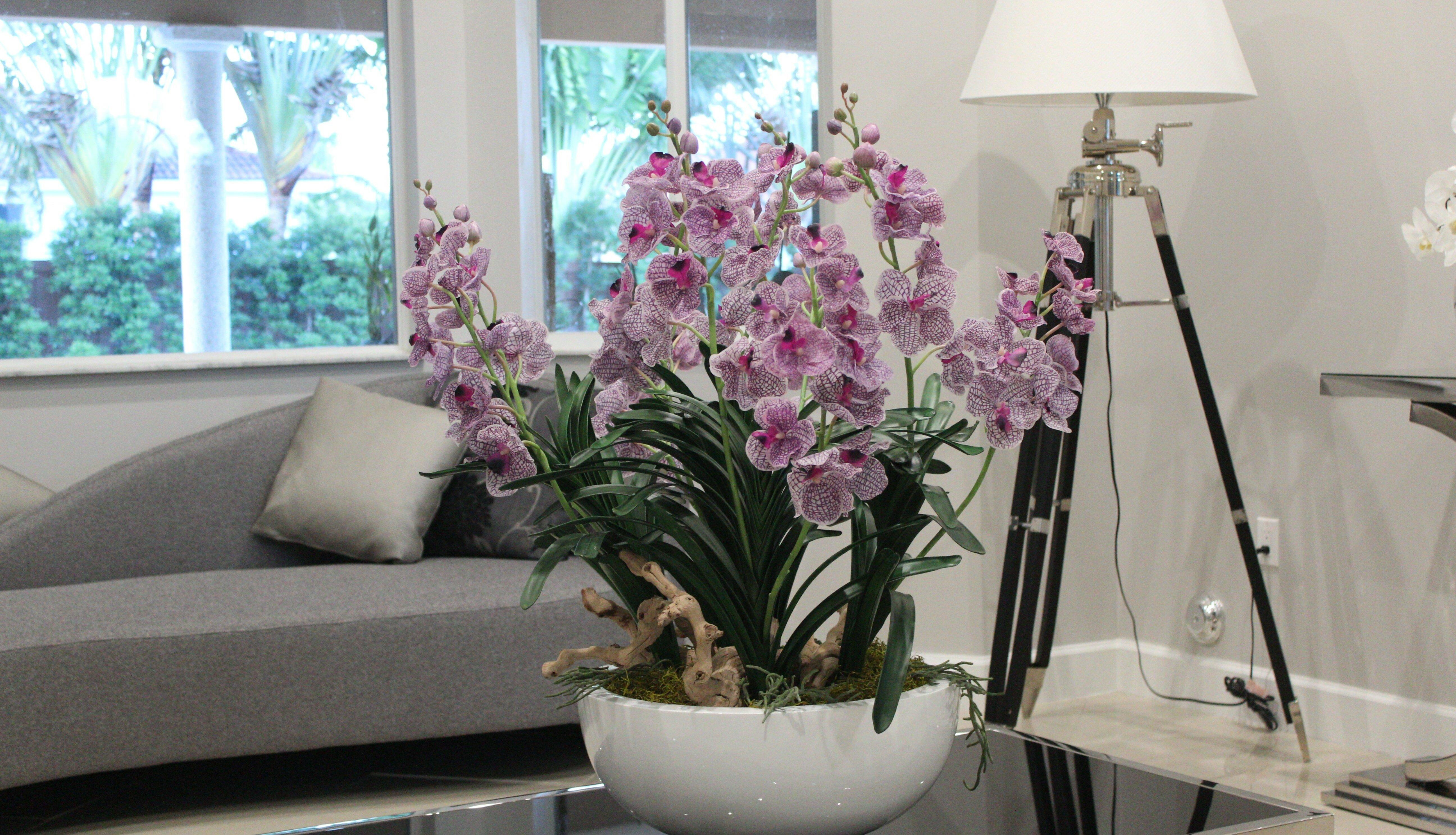Cfadesigngroup Vanda Orchid Floral Arrangement In Planter Wayfair