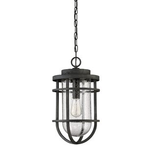 Beachcrest Home Hobkirk 1-Light Outdoor Hanging Lantern
