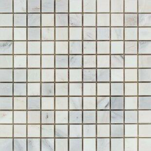 "European Oriental Honed 12"" x 12"" Marble Mosaic Tile by"