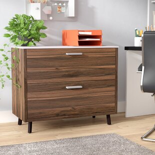 Barkeyville 2 Drawer Lateral File Cabinet by Wade Logan