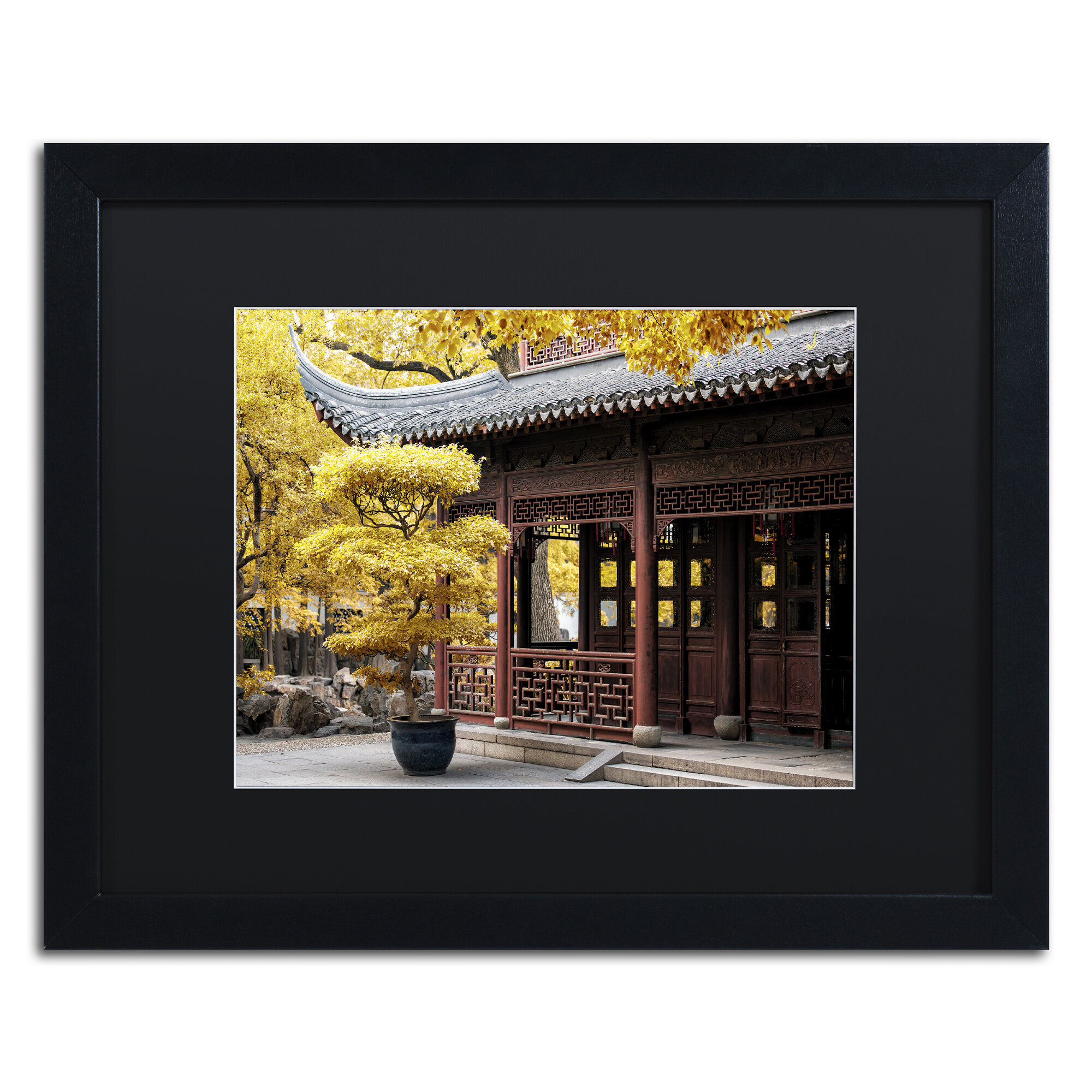 Quot Golden Trees Quot By Philippe Hugonnard Framed Photographic Print