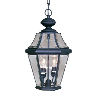 Darby Home Co Violetta 2-Light Outdoor Hanging Lantern