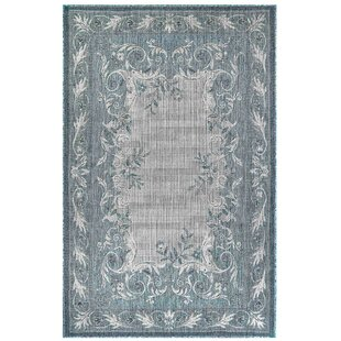 Arverne Aubusson Aqua/Gray Indoor/Outdoor Area Rug