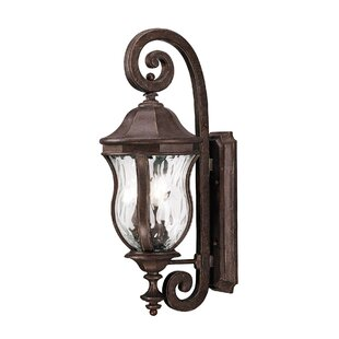 Darby Home Co Coutu Outdoor Wall lantern
