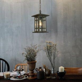 Online Reviews Polanco 1-Light Hanging Lantern By Loon Peak