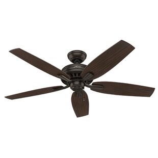 Looking for 52 Newsome 5-Blade Ceiling Fan By Hunter Fan