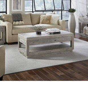 Brayden Studio Mayview 2 Drawer and Bottom Shelf Coffee Table with Storage