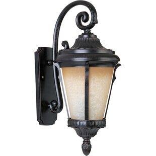 Jeffers 1-Light Outdoor Wall Lantern by Astoria Grand