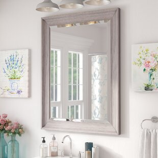 Lark Manor Bartouille Transitional Driftwood Beveled Bathroom/Vanity Wall Mirror