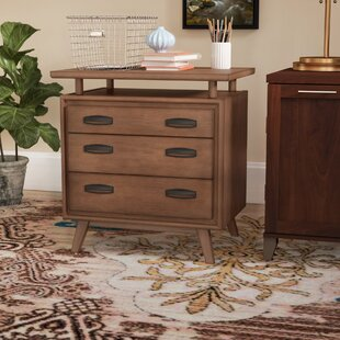 Carolyn 2 Drawer Lateral Cabinet by Brayden Studio #1