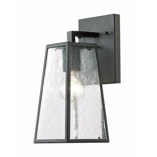Brayden Studio Hanagita LED Outdoor Wall Lantern