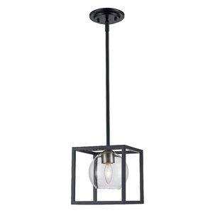 Ivy Bronx Tinley 1-Light Lantern Pendant