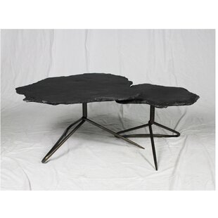 Anding 2 Piece Coffee Table Set