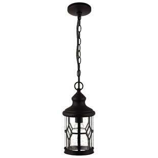 Charlton Home Stockton 1-Light Outdoor Pendant