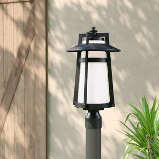 Half Dome Outdoor 1-Light LED Lantern Head by Trent Austin Design