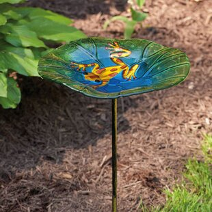 Evergreen Flag & Garden Frog Birdbath