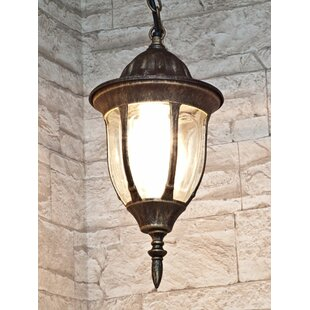 Canada 1 Light Outdoor Hanging Lantern By Astoria Grand
