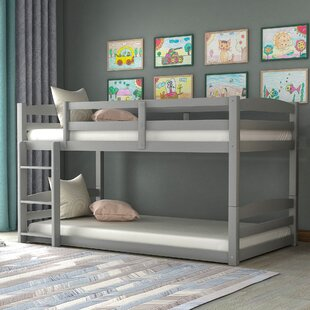 Bitsie Twin over Twin Bed by Isabelle amp Max