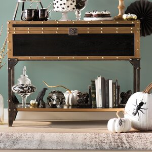 Traci Travel Trunk Console Table by Trent Austin Design