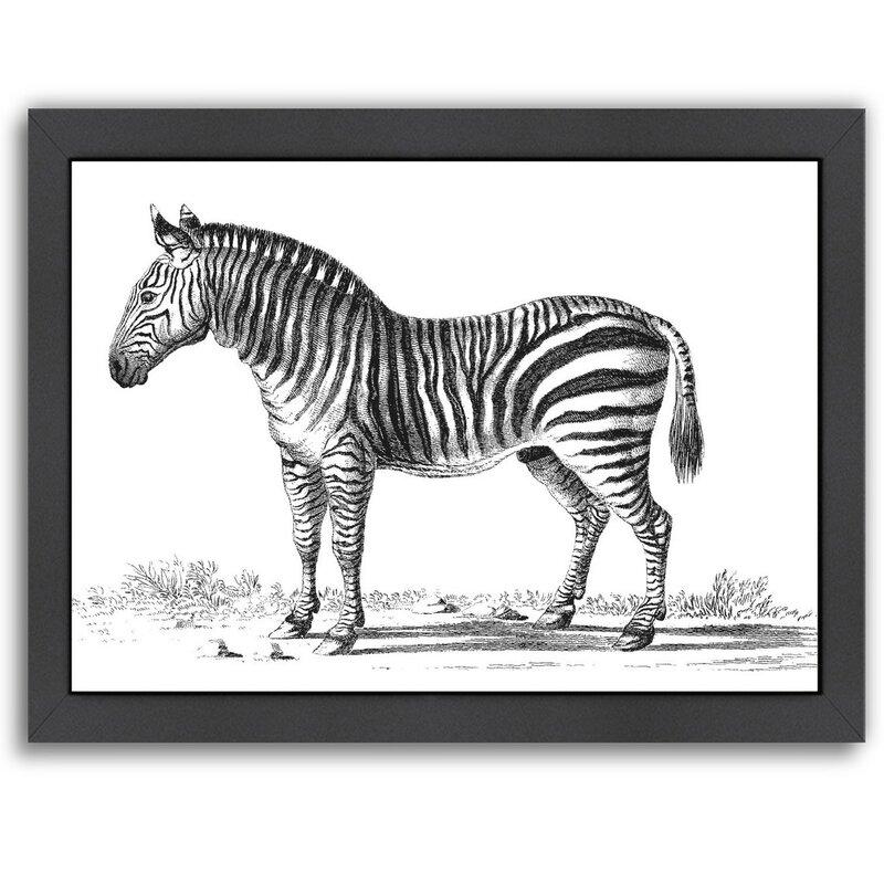 East Urban Home \'Vintage Zebra\' Framed Drawing Print & Reviews ...