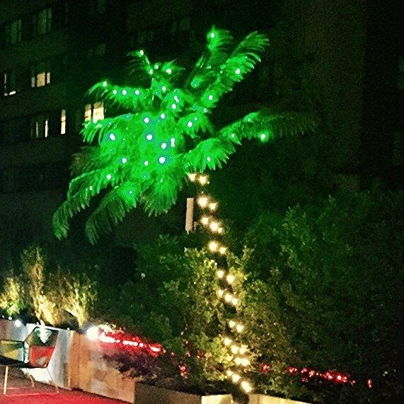 Pre Lit Led 56 Light Palm Tree