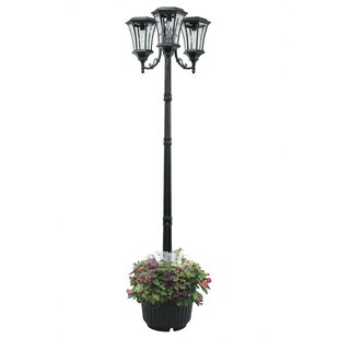 Fleur De Lis Living Skipton Solar 3-Light LED 85