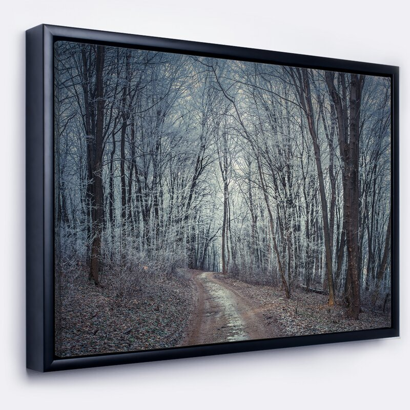 East Urban Home Landscape \'Dense Gray Fall Forest Path\' Framed ...