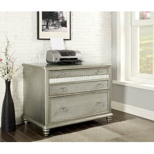 Rosdorf Park Gabrielle 2-Drawer Lateral Filing Cabinet