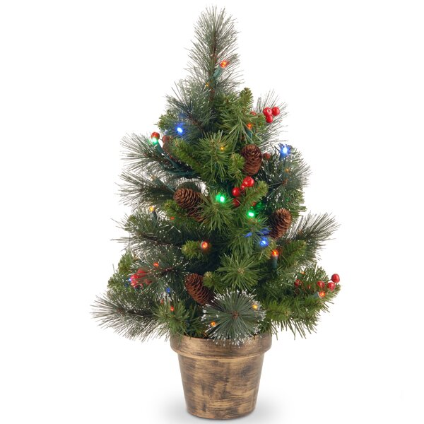Three Posts Spruce Small 2 Green Artificial Christmas Tree With 35 Multicolored Lights Reviews Wayfair