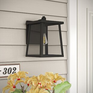 Dunnigan Transitional Outdoor Wall Lantern