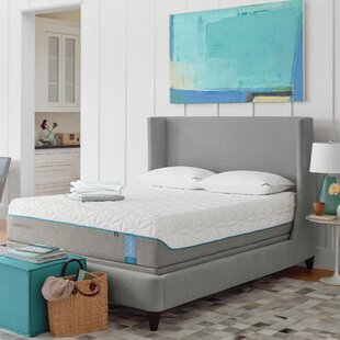 Tempur-Pedic TEMPUR-Cloud® El..