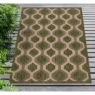 Arverne Geo Green Indoor/Outdoor Area Rug