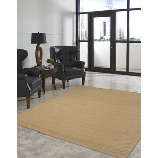 Cecile Beige Indoor/Outdoor Area Rug