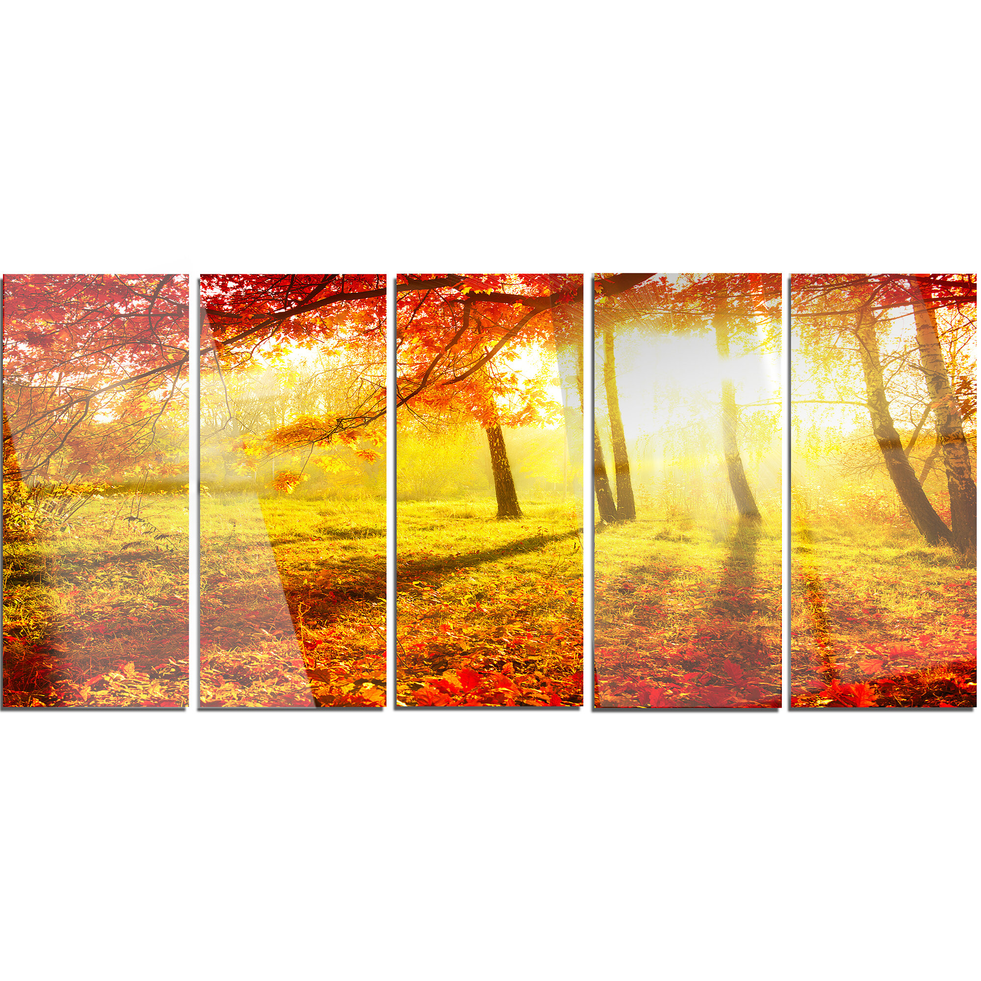 Designart Yellow Red Fall Trees And Leaves 5 Piece Photographic Print On Metal Set Wayfair