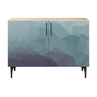 Oakes 2 Door Cabinet by Brayden Studio