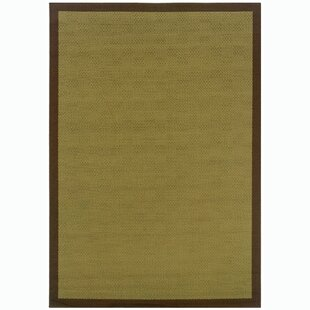 Loehr Textured Border Green/Brown Indoor/Outdoor Area Rug
