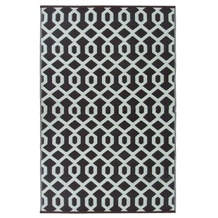 Lightweight Reversible Coco Brown/Ivory Indoor/Outdoor Area Rug
