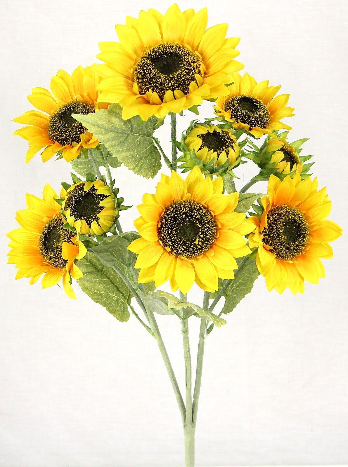 arrangements floraux: fleur - tournesols | wayfair.ca