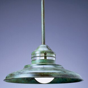 Newport 1-Light Outdoor Pendant