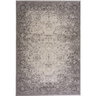 Eila Pearl Indoor/Outdoor Area Rug