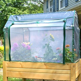 Riverstone Industries Eden 4 Ft. W x 3 Ft. D Mini Greenhouse with Enclosure