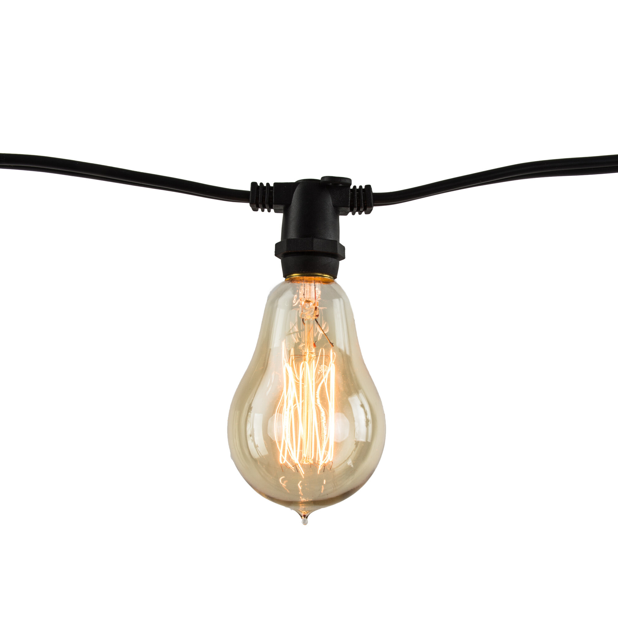 Melody 10 light globe string lights joss main