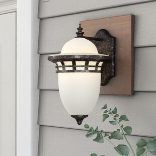 Towry 1-Light Outdoor Wall Lantern