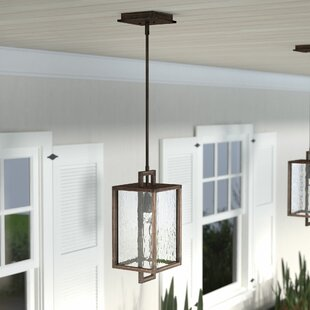 Affordable Borkowski 1-Light Outdoor Hanging Lantern By Mercury Row